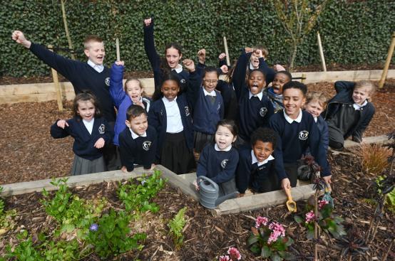 St Paul's primary school woodland garden
