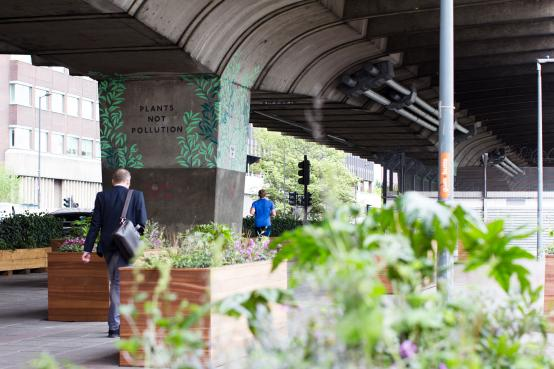 Pollution-busting project to green the area under Hammersmith flyover