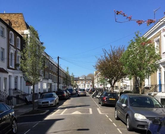 Give our thirsty street trees a drink this summer