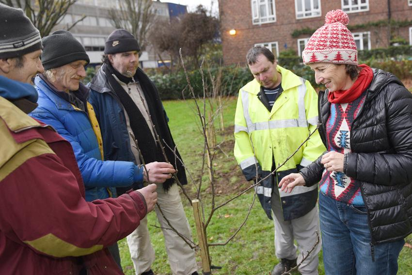 Hammersmith Community Gardens Association helps plant a tree in White City