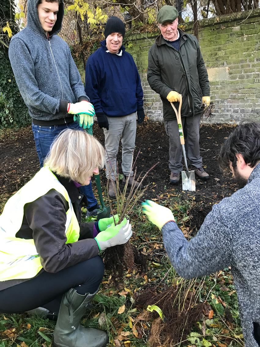 Volunteers have planted 150 trees to mark Margravine Cemetery's 150th anniversary next year