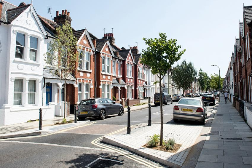 Galloway Road with new trees and cars parked on either side