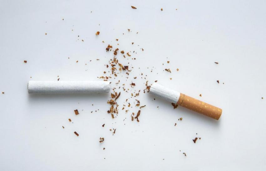 Cigarette broken in half shedding tobacco