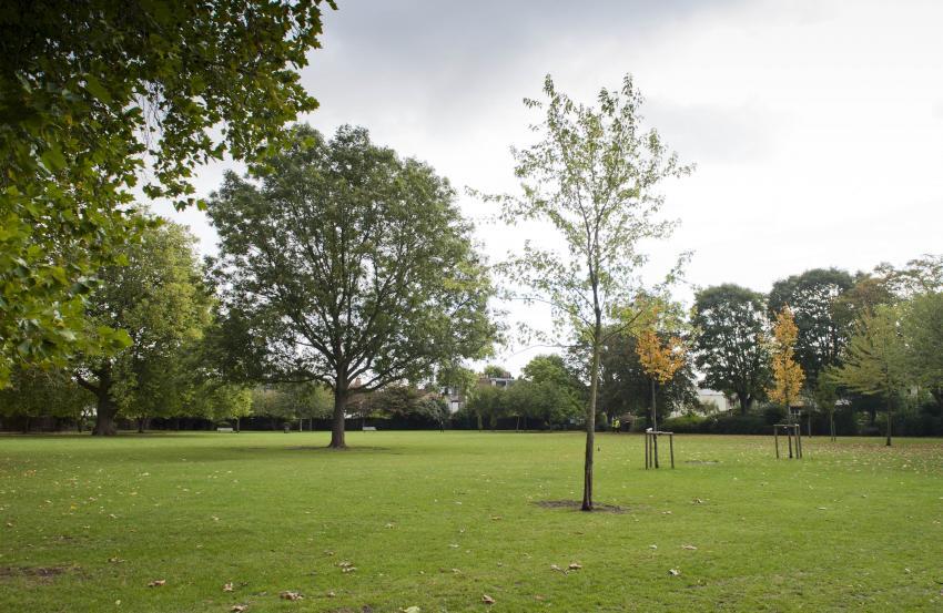 Wendell Park