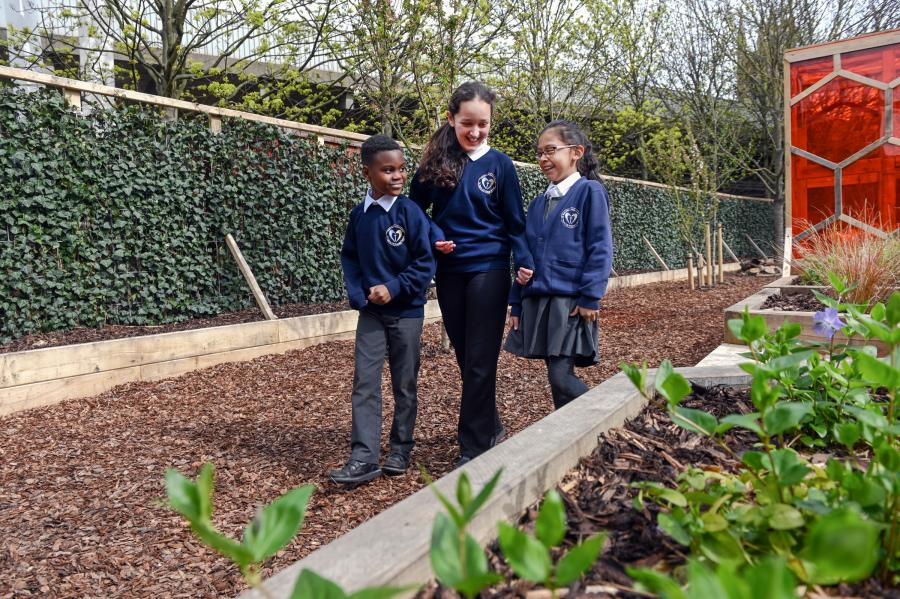 Pupils walking in the new St Paul's school woodland area