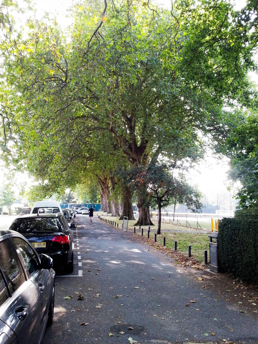 Hurlingham Park 2