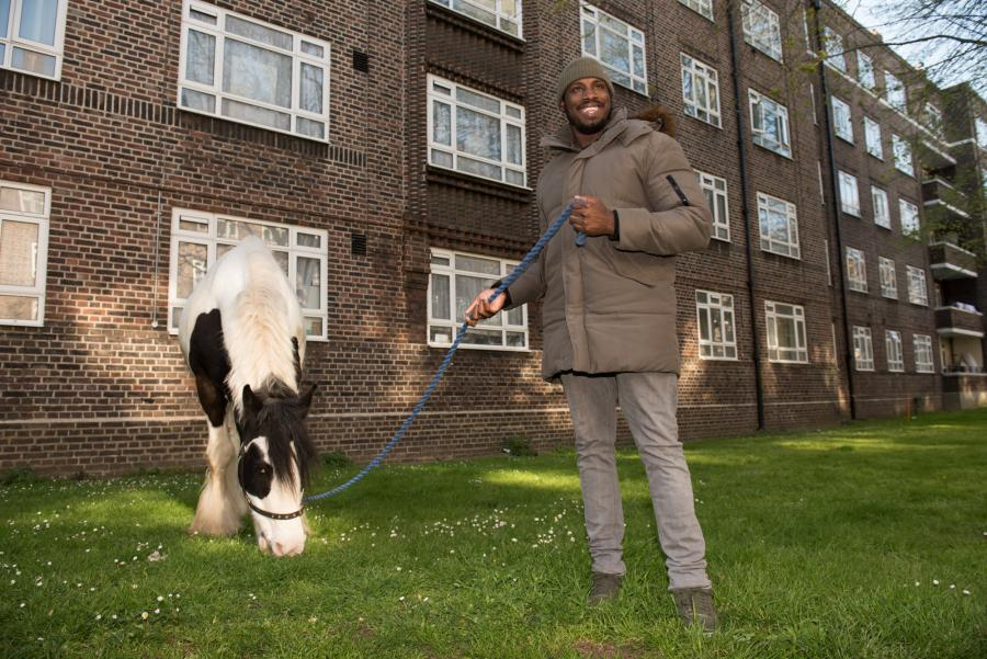 Key4Life charity horse grazing on the White City Estate