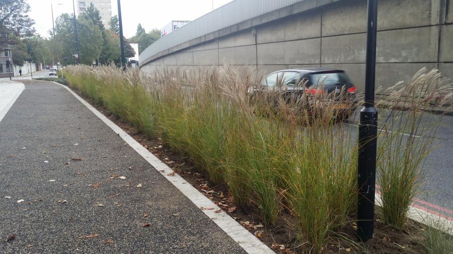 Talgarth Road Green Corridor 4