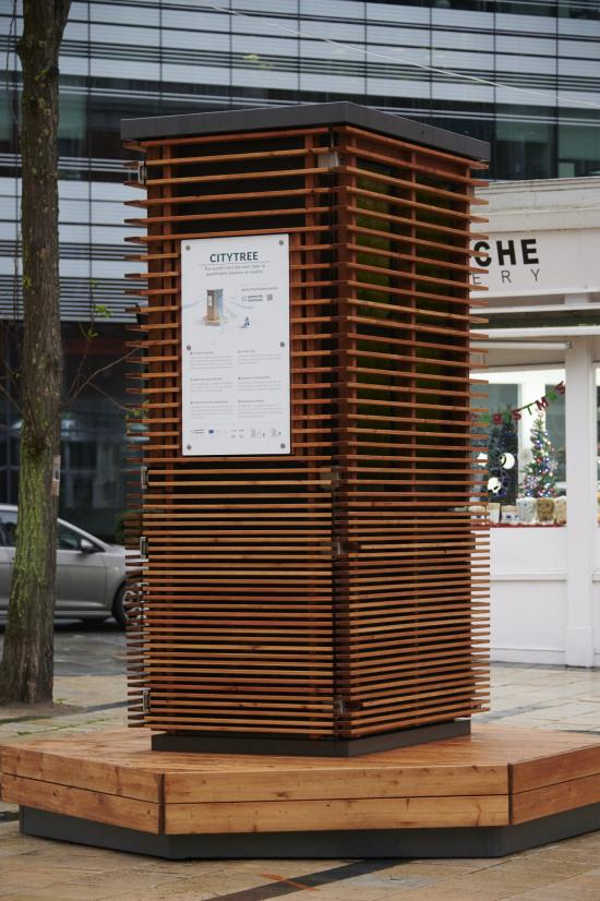 City Tree wooden structure with explanatory sign attached