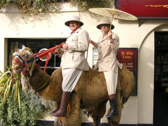 The Camel street entertainment