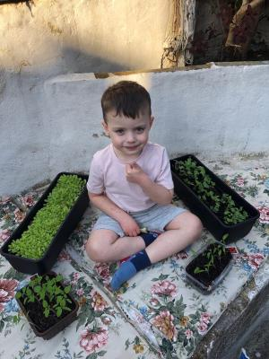 Young child sat on a padded bench surrounded by growing plants in troughs