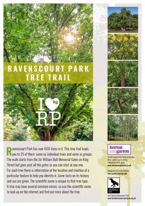 Download link to the Ravenscourt Park Tree Trail leaflet